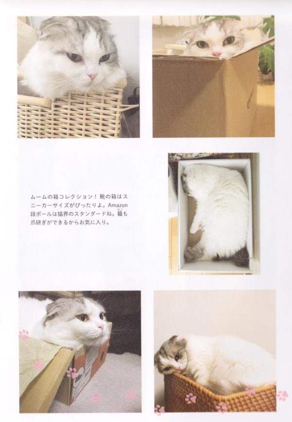 MuMu_Kyo