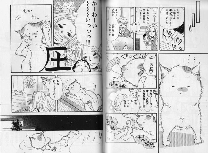 Kitten_Uozumi
